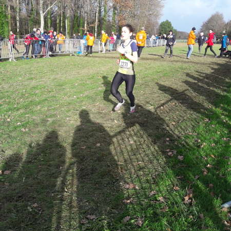 Cross de l'Erdre